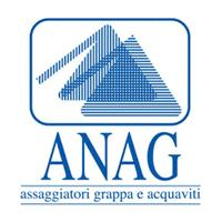 logo Anag